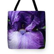 Royale Purple Petals Tote Bag