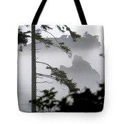 Ruby Beach Washington State Tote Bag