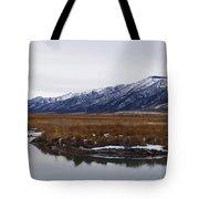 Ruby Marsh In Winter Tote Bag