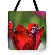 Ruby Scallops Tote Bag