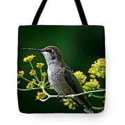 Ruby Throated Hummingbird 1 Tote Bag