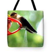 Ruby-throated Hummingbird Pooping Tote Bag