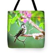Ruby-throated Hummingbnird - 6763-002 Tote Bag