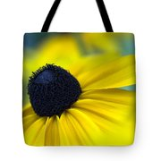 Rudbeckia Coneflower Tote Bag