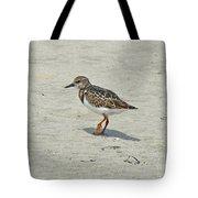 Ruddy Turnstone Wading Bird - Arenaria Interpres Tote Bag