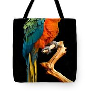 Ruffled But Still Handsome Tote Bag