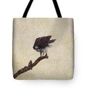 Ruffled Up Osprey Tote Bag