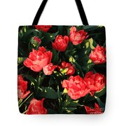 Ruffly Red Tulips Square Tote Bag