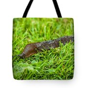 Rufous Garden Slug Tote Bag
