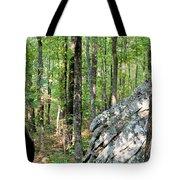 Rugged Terrain Of Boulder Field Tote Bag