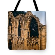 Ruins Of St. Mary's Abbey Tote Bag