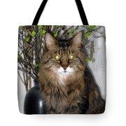 Runcius- Palm Sunday Kitty Tote Bag