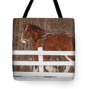 Running Clydesdale Tote Bag