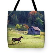 Running Horse And Old Barn Tote Bag