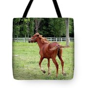 Running In The Breeze Tote Bag