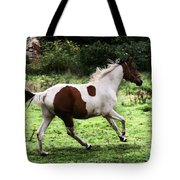 Running Pinto Horse Tote Bag