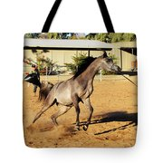 Running Roan Tote Bag