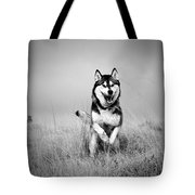 Running Wolf Tote Bag