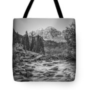 Runoff  Bw Tote Bag