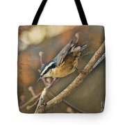 Runway Clear For Takeoff   Redbreasted Nuthatch Tote Bag