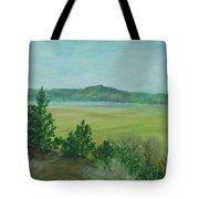 Rural Landscape Art Original Colorful Oil Painting Swan Lake Oregon  Tote Bag
