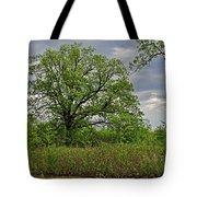 Rural Trees II Tote Bag