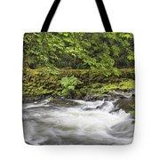 Rushing Water At Cedar Creek Washington State Tote Bag