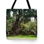 Ruskin Oak - Ocean Springs Tote Bag