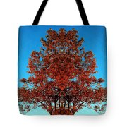 Rust And Sky 2 - Abstract Art Photo Tote Bag