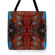 Rust And Sky 5 - Abstract Art Photo Tote Bag