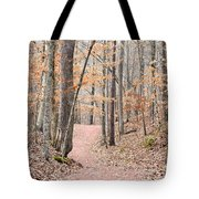 Rustic Trails In January 2013 Tote Bag