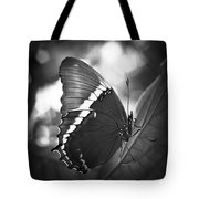 Rusty Tip Butterfly Black And White Tote Bag