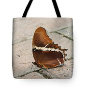 Rusty Tipped Page Butterfly Tote Bag
