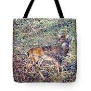 Rutting Buck Tote Bag