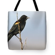 Rwbb On Stick Tote Bag