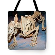 Saber-toothed Cat Tote Bag