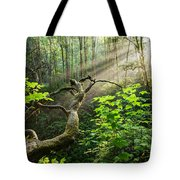 Sacred Grove Tote Bag
