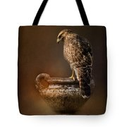 Sacred Moment Tote Bag