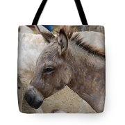Sad Wild Donkey Tote Bag