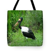 Saddle Billed Stork-136 Tote Bag