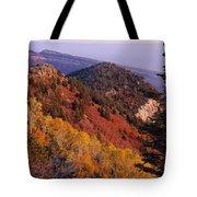 Saddle Mountain Autumn-sq Tote Bag
