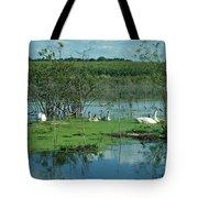 Safe In The Pond Tote Bag