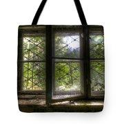 Safe Window Tote Bag