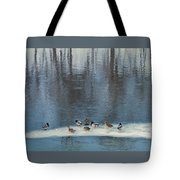 Safehaven   Indiana   Winter Tote Bag