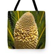 Sago Palm Seed Pod Tote Bag