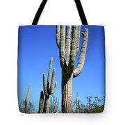 Saguaro At The Saguaro National Park Tote Bag