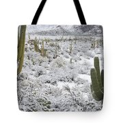 Saguaro Cacti After Rare Desert Tote Bag