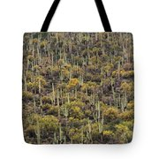 Saguaro Forest At The Foot Of Four Peaks Tote Bag