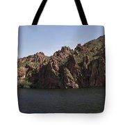 Saguaro Lake Tote Bag