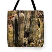 Saguaro Of Many Arms Tote Bag